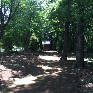 968fc90961df1 役員の方曰く、伊勢神社は広葉樹が多く1~2度ほど涼しく感じられるそうです。